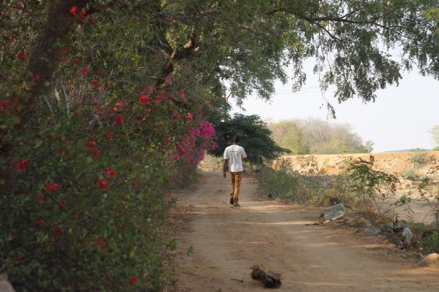 Выход из Ананда парка