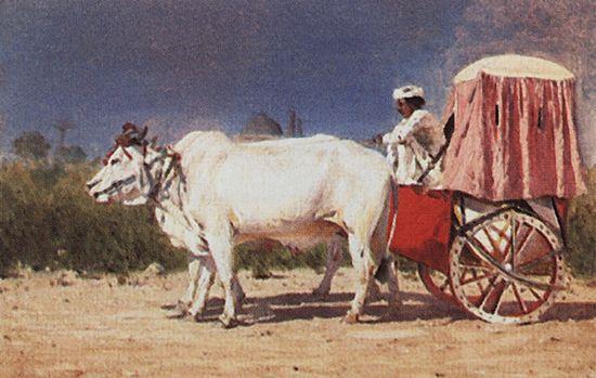 Повозка в Дели. 1874-1876