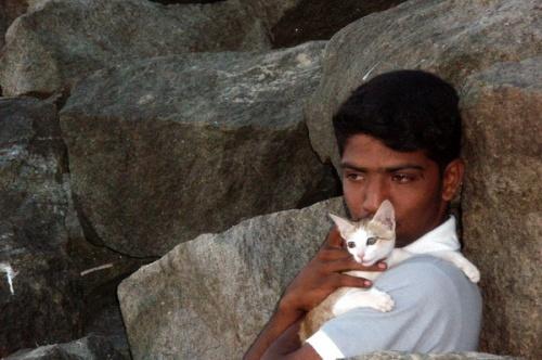 Малчык и кошка. Керала, пляжик.