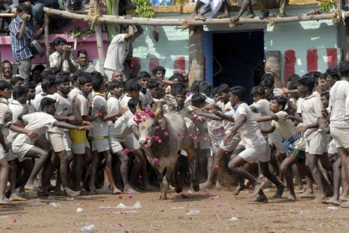 Photo Reuters/Babu