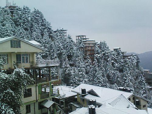 Шимла зимой