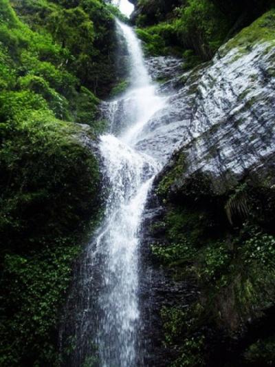 Водопад Chadwick Falls около Шимлы