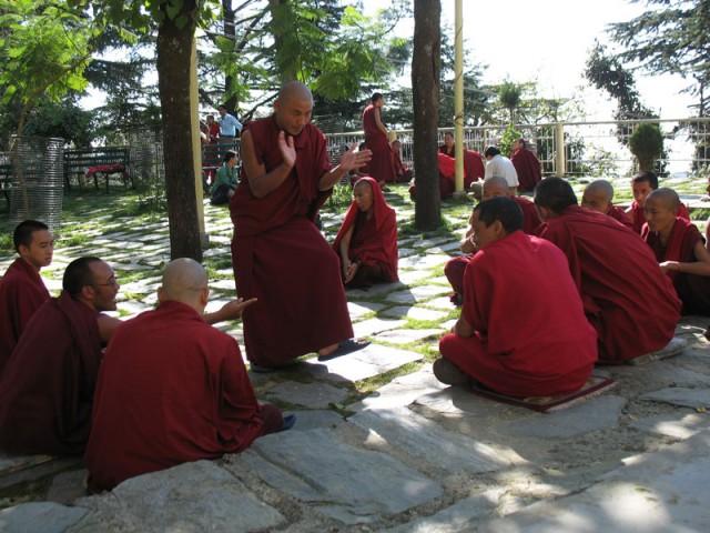 Буддистские монахи дискутируют на террасе перед Намгьял-гомпой