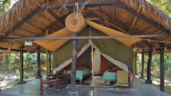 Nameri Eco Camp (эко-лагерь)