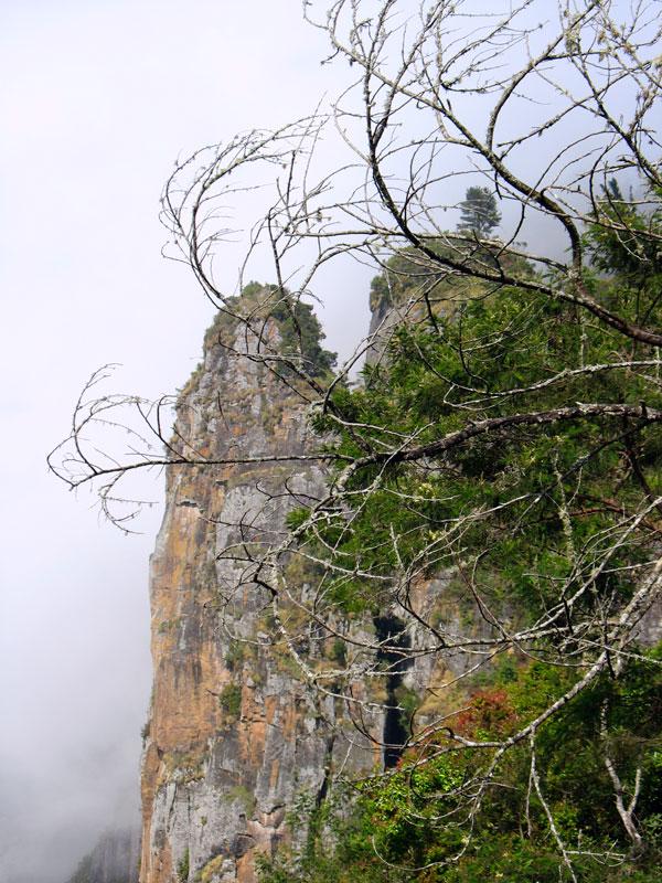 Скалы-колонны (Pillar Rocks