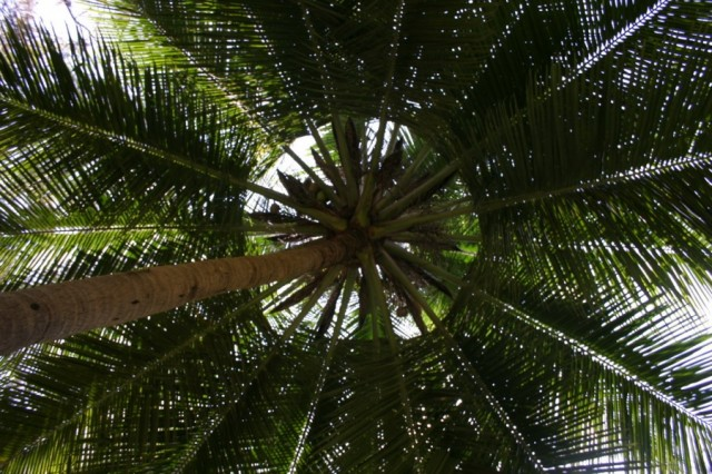Мамалапурам