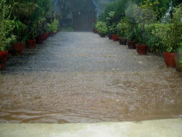 Мумбай просто дождь