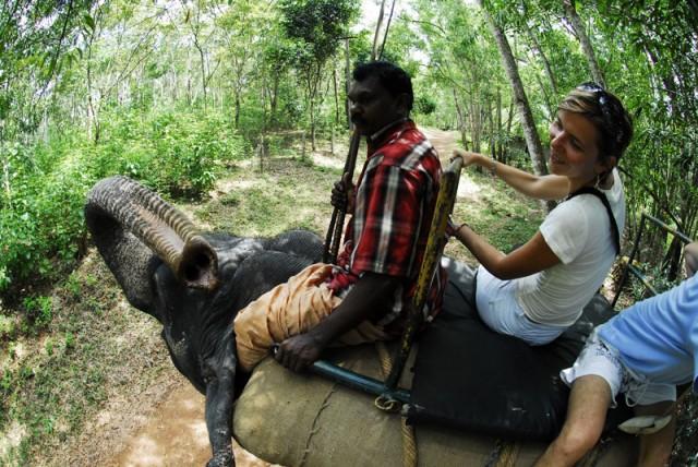 мы катались там на слоне)