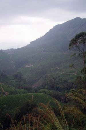 Вид с одной из обзорных точек - внизу рос жасмин и благоухал на всю долину