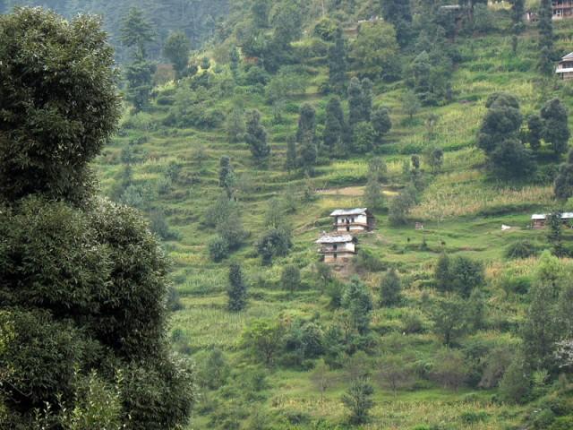 Симпатичные домики в долине Банджар