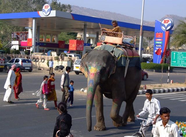 Слон на бензоколонке близ Jal Mahal