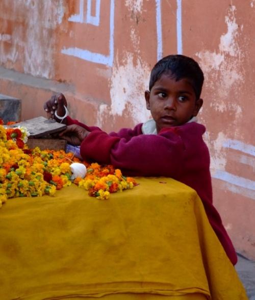 Продавец цветов. Джайпур