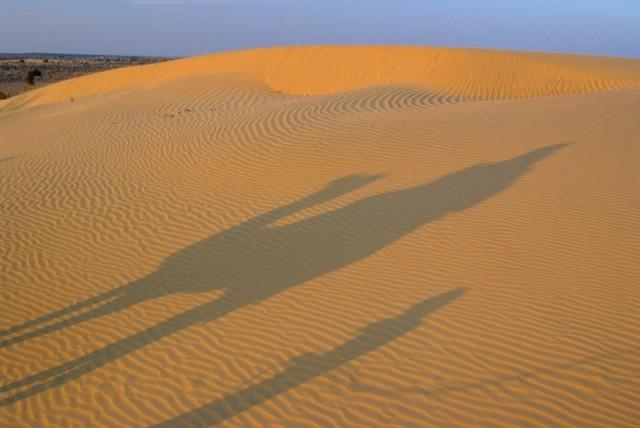 В пустыне Тар