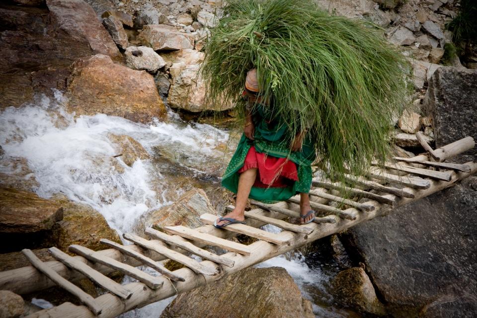 http://www.indostan.ru/indiya/foto-video/3382/5977_15_o.jpg