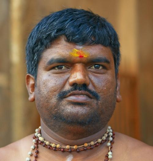 Мужской портрет из Танджвура.