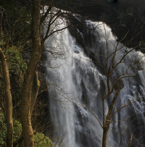 Через джунгли к водопадам