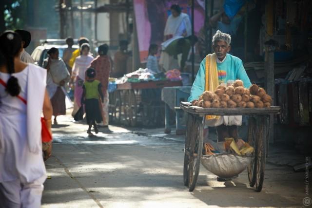 улочка кокосы