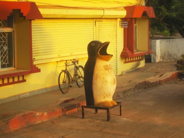Пингвин, питающийся мусором