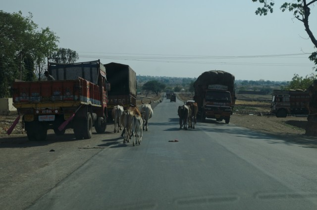 Дорога из Аджанты