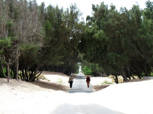 Дорога в песках