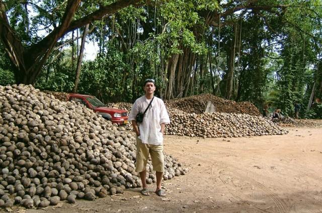 Это не картошка ) Это кокосовые бурты! )