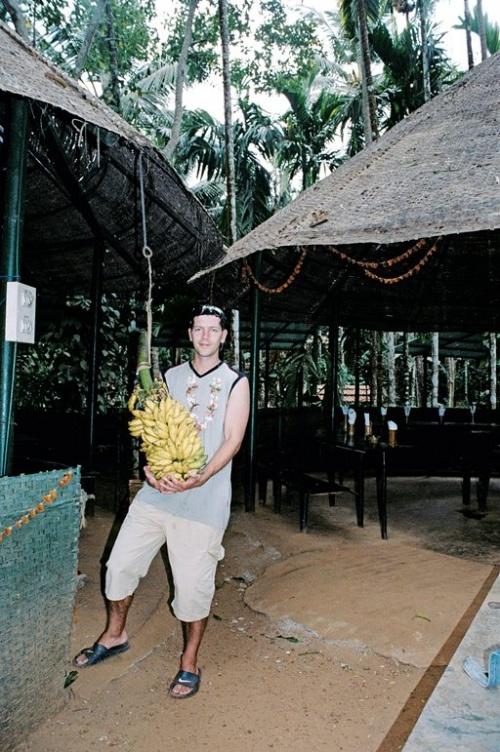 И накормят бананами )