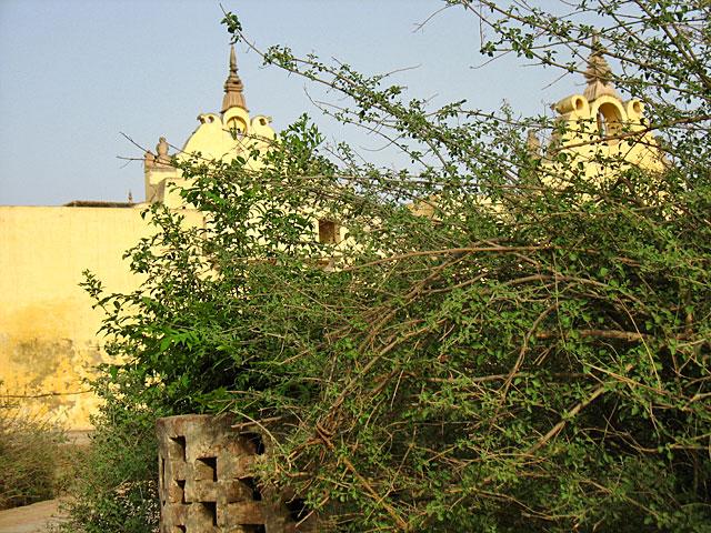 В саду Нидхиван