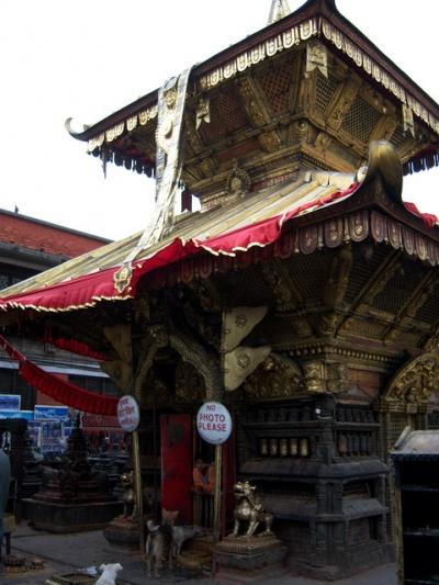 Сваямбхунат