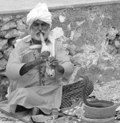 Индия: Заклинатель змей