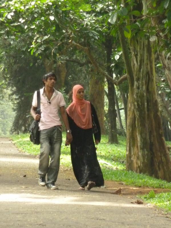 Ботанический сад - рай для влюбленных