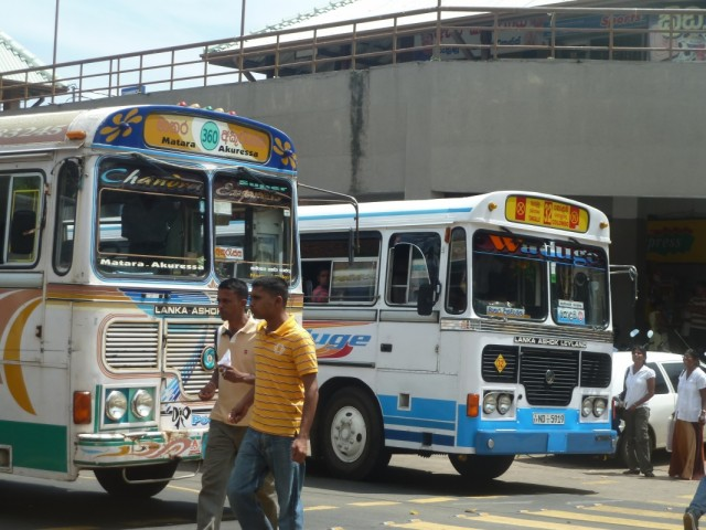 другие автобусы носятся по дорогам