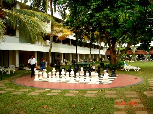 Club Palm Garden. Шахматы